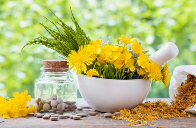 A Beginner's Guide to Homeopathy